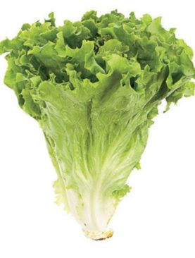 green lettuce leaves 100gm